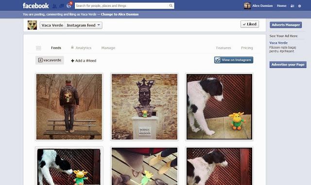 Facebook Instagram Bonding