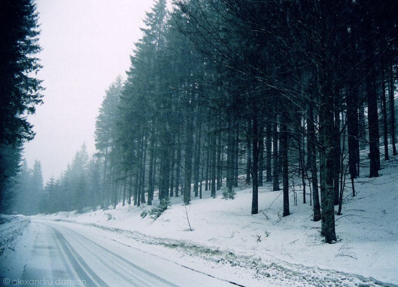 Asteptand Iarna