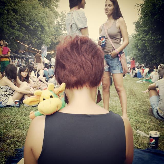 Oamenii frumoși de la Summer Well 2013