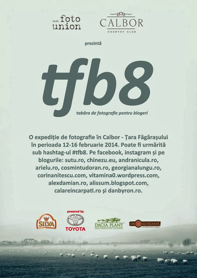 TFB8 – Never ending beautiful story