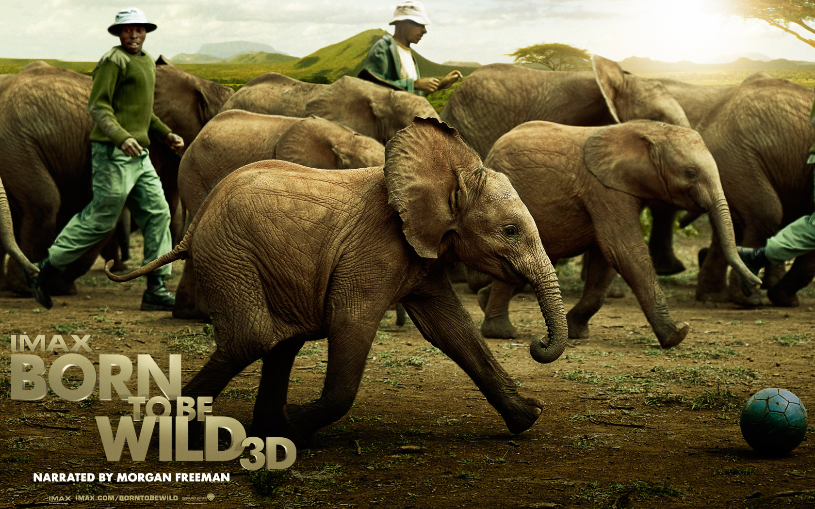 Born to be Wild 3D IMAX – #earthday